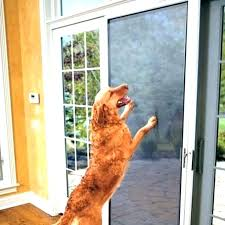 door protector dog kindery