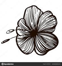 цветок гибискуса декоративный цветочный элемент руки обращается