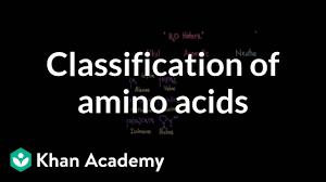 Mcat Amino Acid Chart Classification Of Amino Acids Video Khan Academy