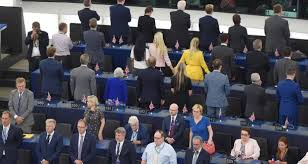 Image result for Photos of Brexit party MEPs