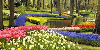 Small Picture Best Flower and Ornamental Gardens Prettiest Nature Destinations