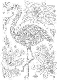 Flamingos Coloringcard Coloringcards 395 Knutselde Ed