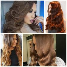 Different Hair Colors Of Brown Best