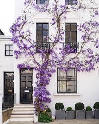 Dreaming of Spring: Beautiful Home ExteriorsBECKI OWENS ...