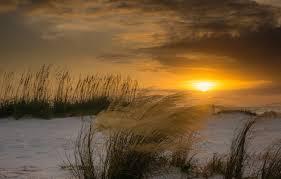 Wallpaper winter, beach, the sun ...