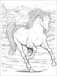 Disegni Da Colorare E Stampare Cavallo Fredrotgans