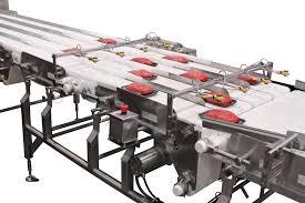 Dorner Conveyor Design Sanitary Transportation For Meat And Poultry Handling