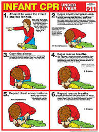 Infant Cpr First Aid Instructional Wall Chart Poster Arc Aha Guidelines Ebay