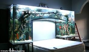 Aquatic Flair: Chad Ochocincou0027s Arched Fish Tank That Appears On The Animal  Planet Show Tanked