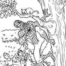 Small Picture The amazing spiderman online coloring pages Hellokidscom
