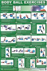 Body Ball Exercises Chart Upper Body Lower Body 10 95