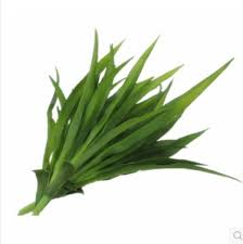 plant leaves green grass decorative flowers artificial for home decoration