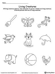 cbd63818fd925d2614aac5f3b3c51996 understand living things animals sorting kindergarten on sentence development worksheets