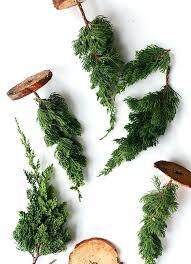how to make mini fresh trees christmas tree decorations michaels