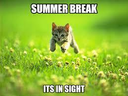 Summer-memes-for-whatsapp.png via Relatably.com