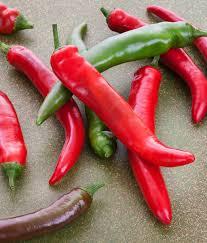garden salsa hot pepper um heat