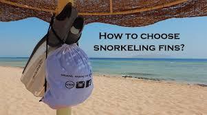Best Snorkeling Fins 2019 Guide Reviews Snorkel Around