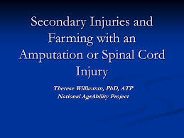 Sci Ppt Secondary Injuries And Farming With An Amputation Or Sci 3 Ppt