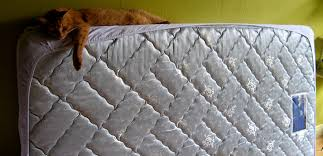 stained mattress. Brilliant Stained With Stained Mattress