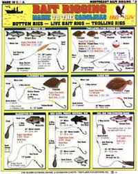 Rigging Chart Details About Saltwater New England Bait Rigging Chart Tightline Tightlines Publications 2