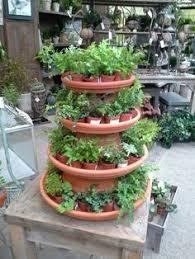 Garden Center Merchandising Display Ideas   JM home and garden plant display    Delightful Displays