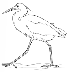 Small Picture coloring pages of birds flying gianfredanet 236814 Gianfredanet
