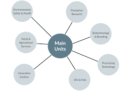 Sime Darby Plantation Organization Chart Research Development Overview Sime Darby Plantation