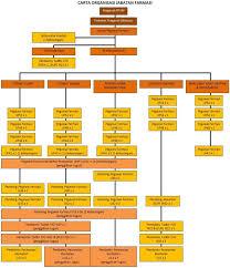 Organisation Chart Ummc Pharmacy Portal V2