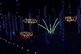 best time to see garden of lights at green bay botanical garden in midwest 2019