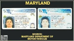License com Template Driver's Maryland Of 27 Bfegy Images