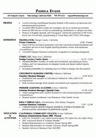 Business Resumes Template Business Resume Template