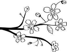 かわいい桜 春の花 白黒イラストシンプル和風83138 素材good