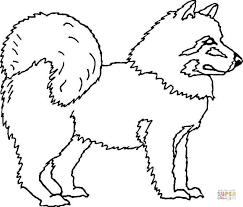 Cute Husky Coloring Pages Doberman Puppies Dr Odd Moon Moon