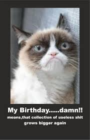 grumpy cat birthday quotes. Modren Birthday Image  614122  Grumpy Cat Know Your Meme And Birthday Quotes