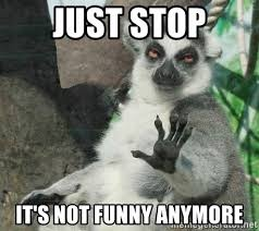 Just stop It's not funny anymore - Not Today Lemur | Meme Generator