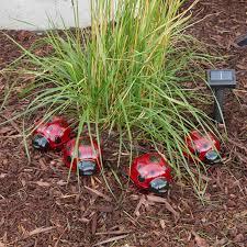 Ladybug Garden Lights Smart Solar Ladybug Accent Lights Lighting More Shop