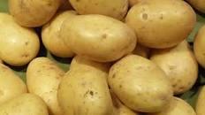 """Résultat de recherche d'images pour """"Pomme de terre"""""""