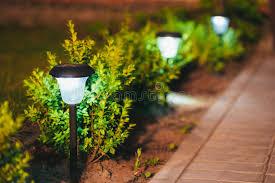 flower bed lighting. Download Small Solar Garden Light, Lantern In Flower Bed. Design. Stock Photo Bed Lighting