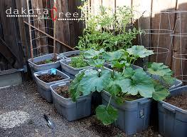 container garden vegetables. Contemporary Container Garden Container With Vegetables