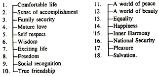 essay on values meaning characteristics and importance terminal values
