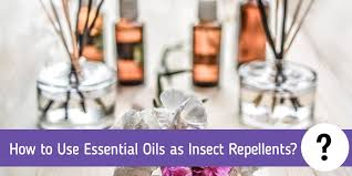 Essential Oils Pest Control Chart How To Use Essential Oils As Insect Repellents Full Guide