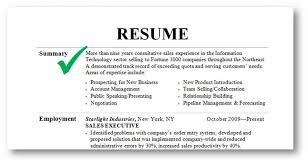 How To Do A Summary On A Resume Leviedellolio Impressive What To Put In Summary Of Resume