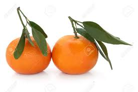 Image result for satsuma orange