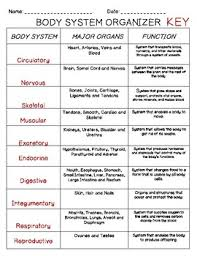 Body System Sorting Cards With Student Organizer Chart And Exit Ticket