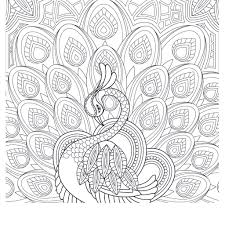 Coloring Page Coloring Page Pages Rainforest Animals Colouring