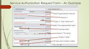 The Service Authorization Justification Request Form (The Sarj ...
