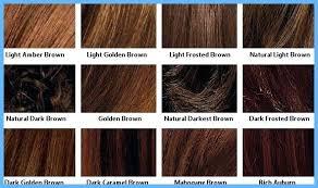 Shades Of Brown Hair Color Chart Matrix For Dark Light Shade