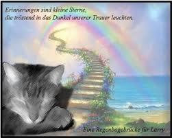 Grundgesetz Aktivierer Thema Anzeigen Nur Für Katzen