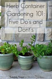 want to start an herb garden here are 5 dos and don ts to help get you started