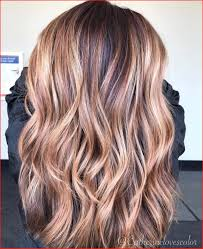 Light Brown With Caramel Highlights Unique Light Brown Hair Color Highlights Photos Of Hair